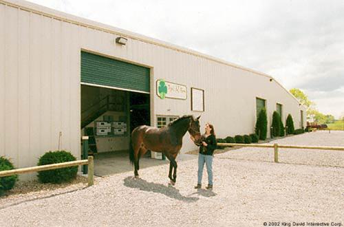 horse-riding-facility