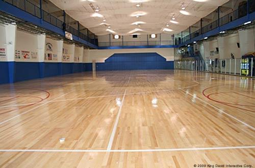Pre Engineered Sports Arenas Recreational Steel Buildings